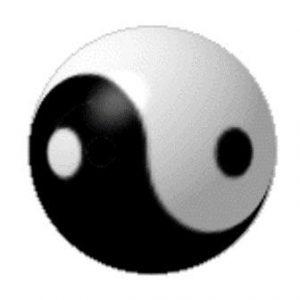 yinyang-3d