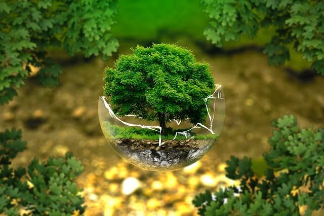Ecologistas en acción: Decrecimiento