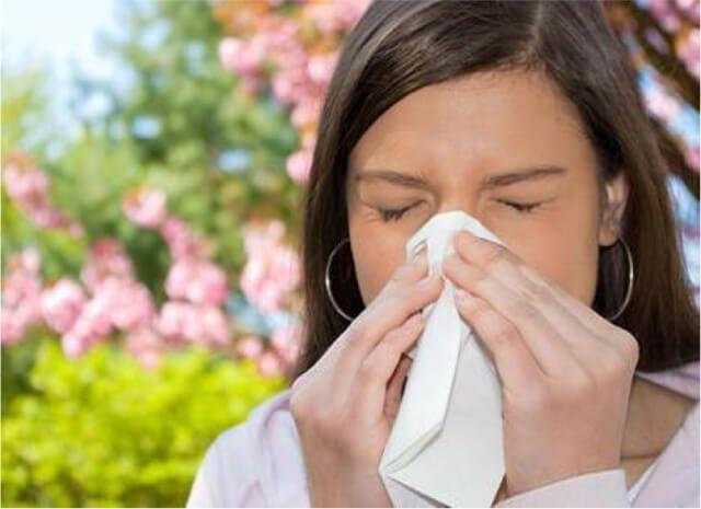 Almanecer Toma Conciencia Salud por las estaciones Primavera Dieta Alergias Autogestion de la salud Sevilla Dos Hermanas