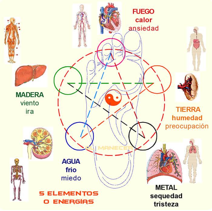 reflexologia podal bioenergetica tao taoismo cinco elementos holistica sevilla almanecer tomaconcienciaya