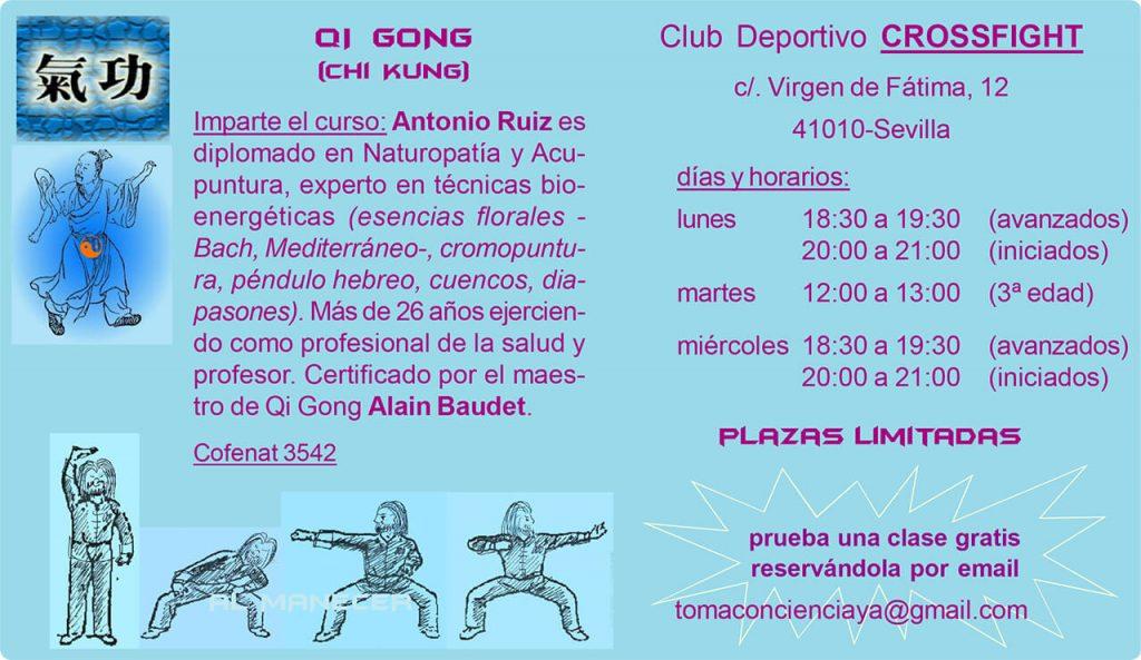 Qi Gong Chi Kung Sevilla Terapias Alternativas Conciencia Cuerpo