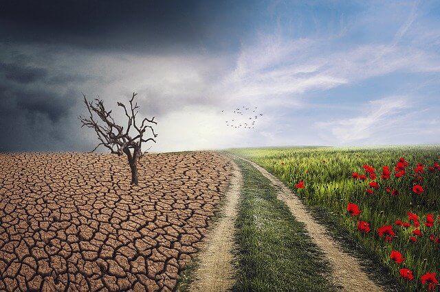 cambio climatico tomar conciencia terapias alternativas sevilla